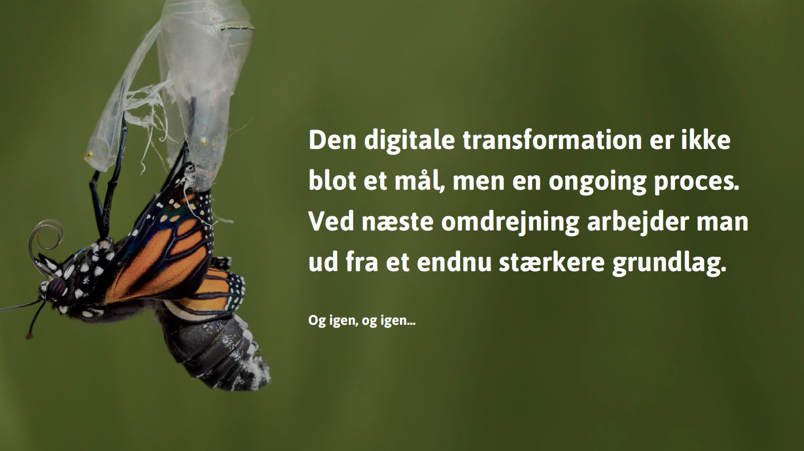 digitaltransformationscyklus